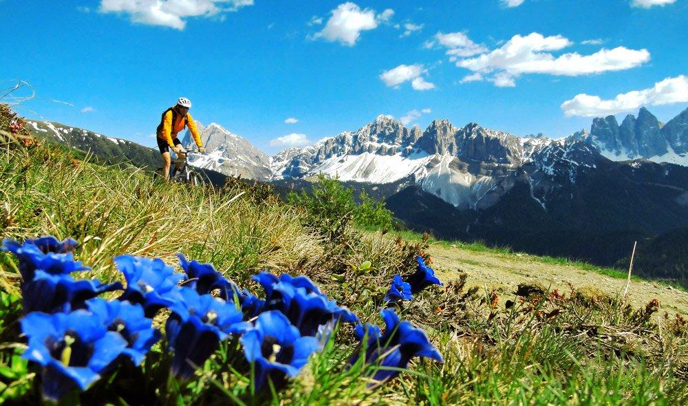 CAIdom – DIE Challenge für Downhill Mountainbiker