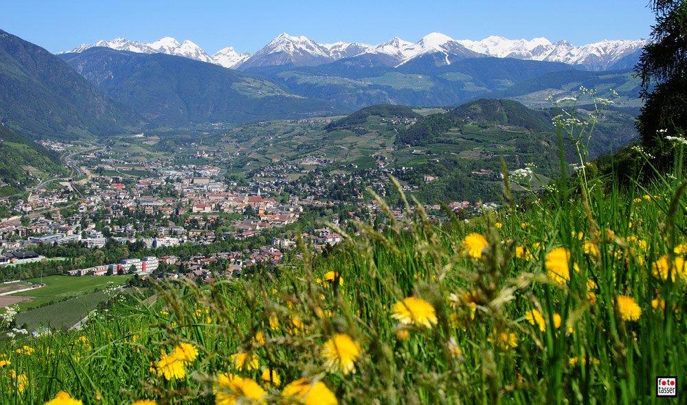Sommerurlaub im Eisacktal/ Südtirol