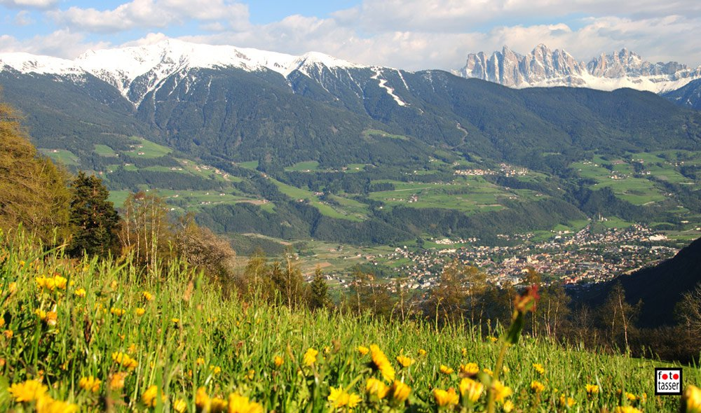 From the ski-runs directly to the alpine meadows in the vernally Eisack Valley