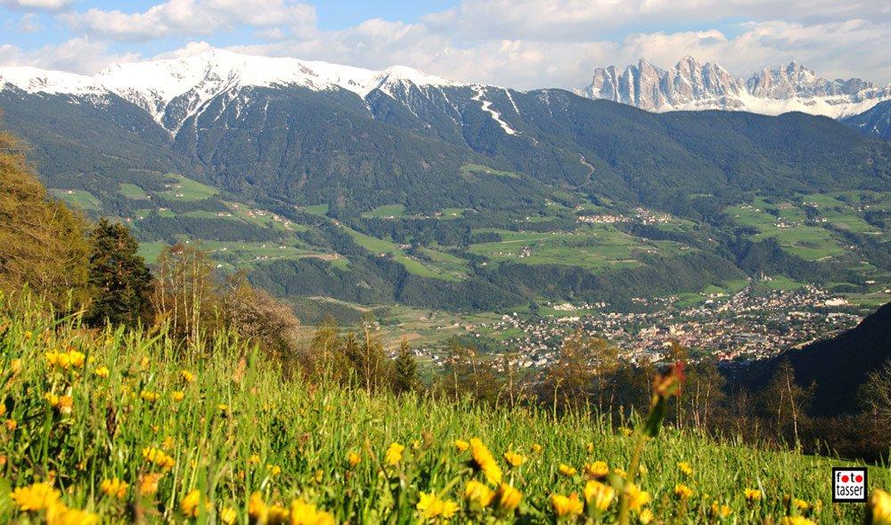 Primavera in Valle Isarco, dalle piste da sci ai prati in fiore