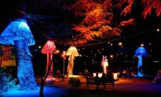 Wasser Licht Festival