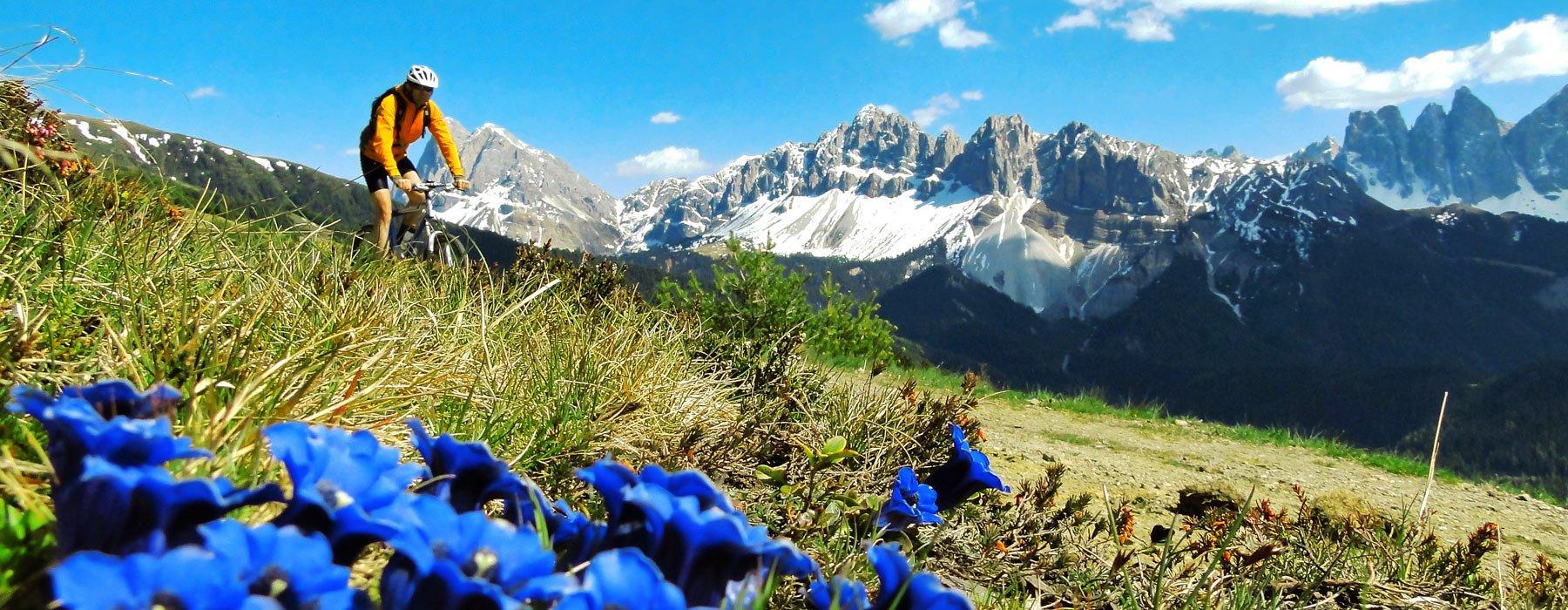 Pensione summererhof bressanone vacanze bressanone plose for Bressanone vacanze